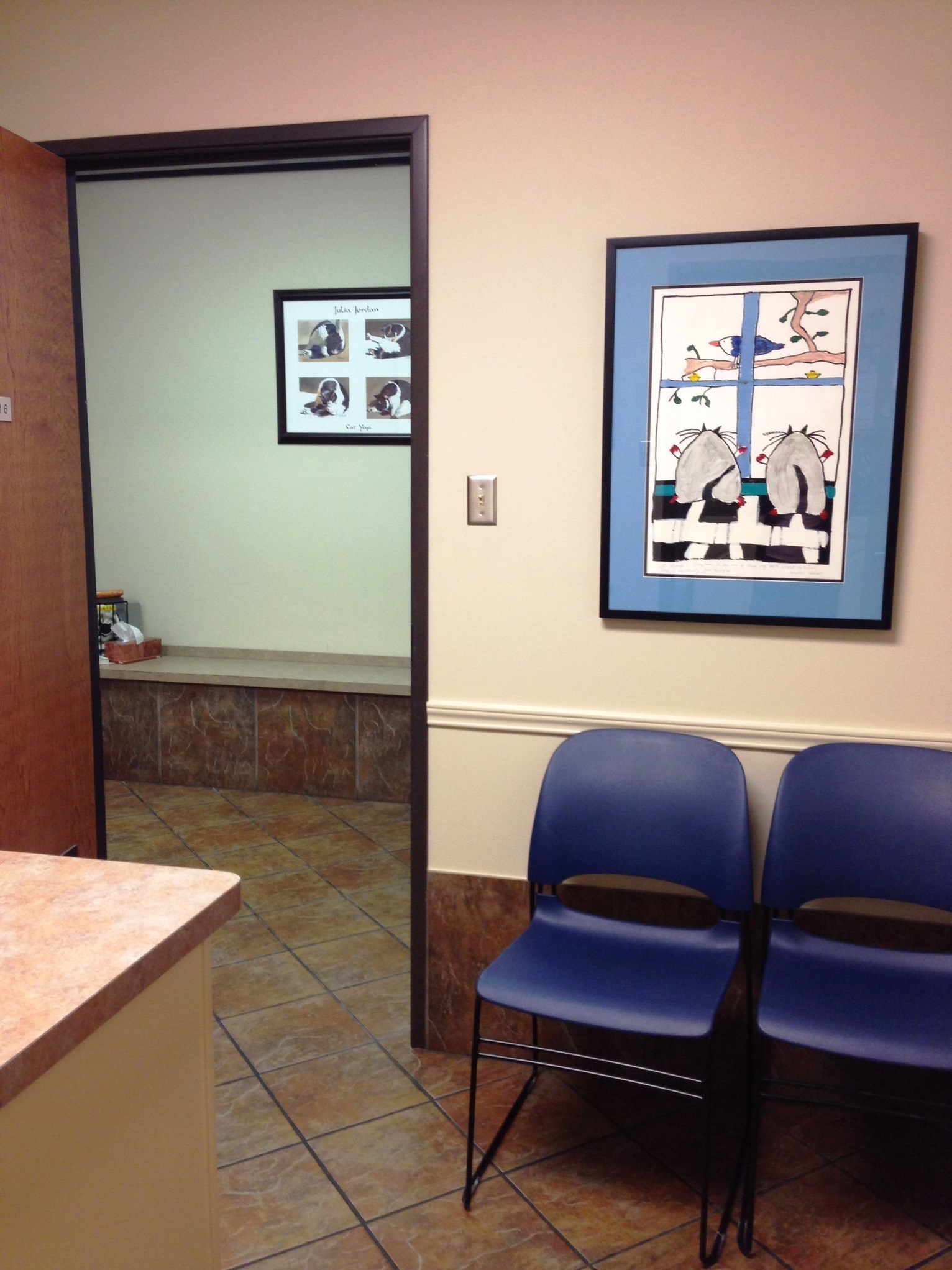 Kitty Exam Room